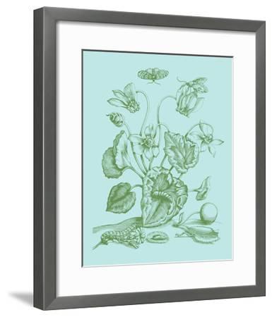 Spring Cyclamen I-Vision Studio-Framed Art Print