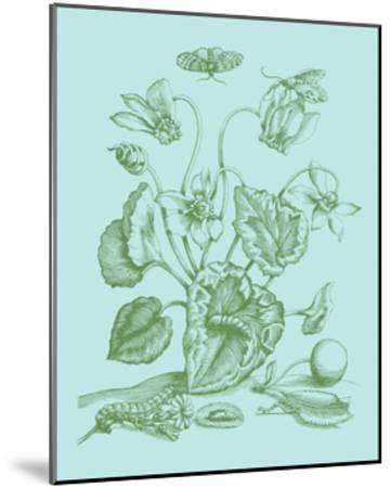 Spring Cyclamen I-Vision Studio-Mounted Art Print
