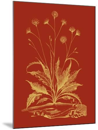 Paprika Bouquet III-Vision Studio-Mounted Art Print