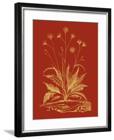 Paprika Bouquet III-Vision Studio-Framed Art Print