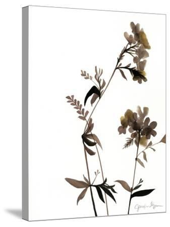 Watermark Wildflowers II-Jennifer Goldberger-Stretched Canvas Print