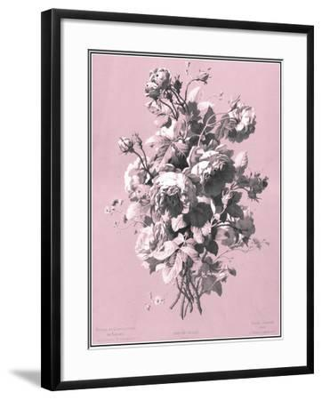 Dussurgey Roses on Pink-Dussurgey-Framed Art Print