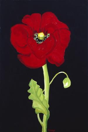 Red Poppy-Soraya Chemaly-Stretched Canvas Print