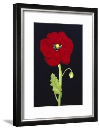 Red Poppy-Soraya Chemaly-Framed Premium Giclee Print