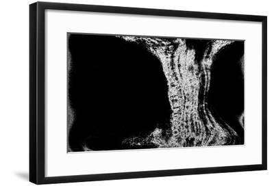 NIRVANA?Existence Appears Little by Little-Masaho Miyashima-Framed Giclee Print