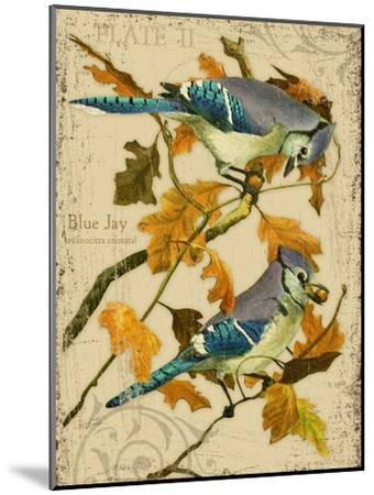 Blue Jay-Kate Ward Thacker-Mounted Giclee Print