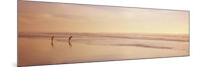 Two Children Playing on the Beach, San Francisco, California, USA--Mounted Photographic Print