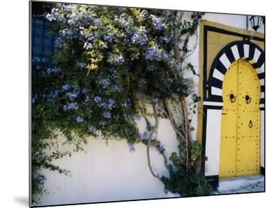 Tunis, Sidi Bou Said, A Decorative Doorway of a Private House, Tunisia-Amar Grover-Mounted Photographic Print