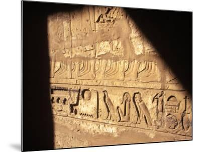 Hieroglyphics on Entrance to the Temple of Karnak-Mark Hannaford-Mounted Photographic Print
