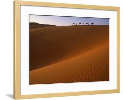 Tenere Desert, Camel Caravan Travelling Through the Air Mountains and Tenere Desert, Niger-Paul Harris-Framed Photographic Print