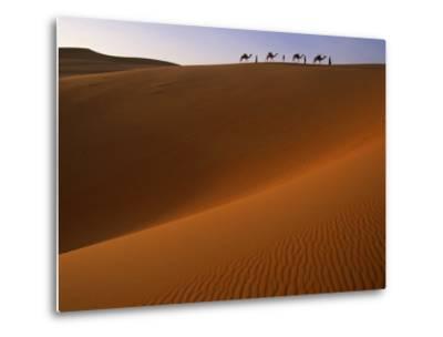 Tenere Desert, Camel Caravan Travelling Through the Air Mountains and Tenere Desert, Niger-Paul Harris-Metal Print