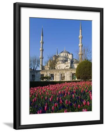 Blue Mosque, also known as the Sultanahmet Mosque, Gives its Name to the Surrounding Area-Julian Love-Framed Photographic Print