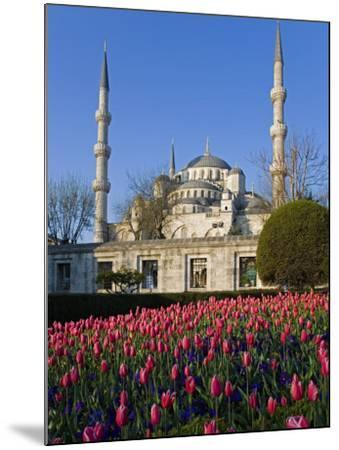 Blue Mosque, also known as the Sultanahmet Mosque, Gives its Name to the Surrounding Area-Julian Love-Mounted Photographic Print