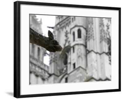 St. Gatien Cathedral Gargoyle, Tours, Indre-Et-Loire, France, Europe-Godong-Framed Photographic Print