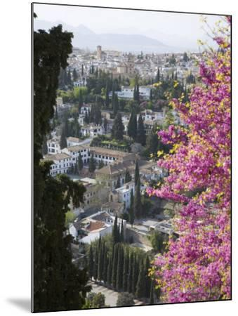 View from Gardens of the Generalife to the Albaicin District, Granada, Andalucia-Ruth Tomlinson-Mounted Photographic Print
