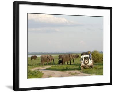 Group of Elephants and Landrover, Chobe National Park, Botswana, Africa-Peter Groenendijk-Framed Photographic Print