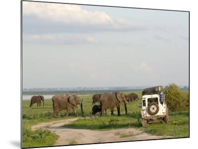 Group of Elephants and Landrover, Chobe National Park, Botswana, Africa-Peter Groenendijk-Mounted Photographic Print