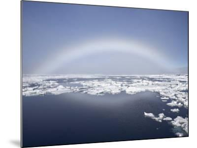 Anthelion, Svalbard Islands, Arctic, Norway, Europe-James Hager-Mounted Photographic Print