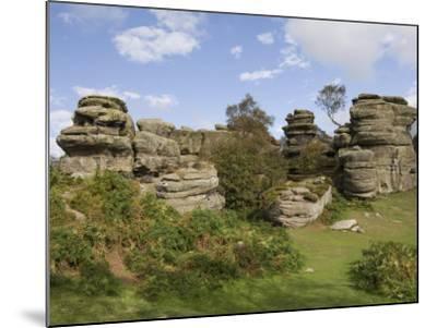 Brimham Rocks, Brimham Moor, Near Ripon, North Yorkshire, England, United Kingdom, Europe-James Emmerson-Mounted Photographic Print