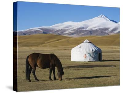 Nomads Horse and Yurt, Bayanbulak, Xinjiang Province, China, Asia-Christian Kober-Stretched Canvas Print