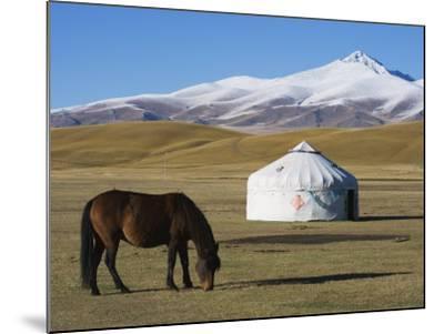 Nomads Horse and Yurt, Bayanbulak, Xinjiang Province, China, Asia-Christian Kober-Mounted Photographic Print