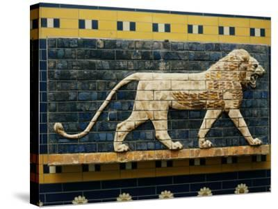 Lion, Glazed Brick Relief, 604-562 BC, Neo-Babylonian--Stretched Canvas Print
