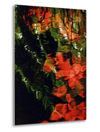 Reflections in the West Fork of Oak Creek, Sedona, Arizona, USA-Margaret L. Jackson-Metal Print