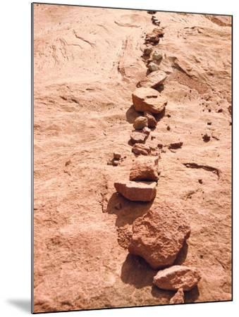 Row of Red Rocks on Red Sand-Rob Lang-Mounted Photographic Print