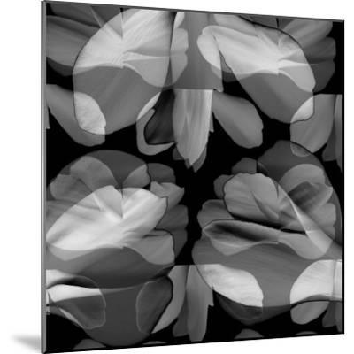 Floral Petals Upon Petals-Winfred Evers-Mounted Photographic Print