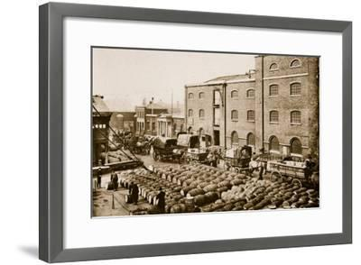 Barrels of Molasses in the West India Docks-English Photographer-Framed Giclee Print