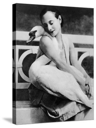 Anna Pavlova with Her Pet Swan Jack, C.1905--Stretched Canvas Print