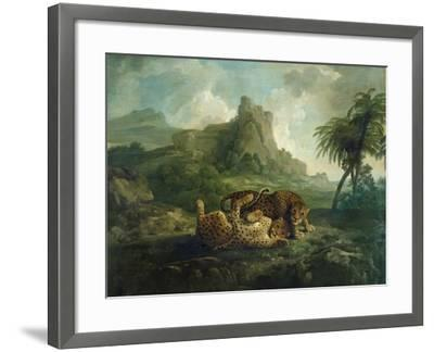 Leopards at Play, c.1763-8-George Stubbs-Framed Giclee Print