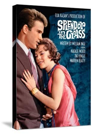 Splendor in the Grass, 1961--Stretched Canvas Print