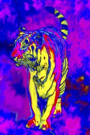 Tiger Endangered Species-Rich LaPenna-Stretched Canvas Print