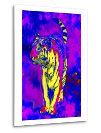 Tiger Endangered Species-Rich LaPenna-Metal Print