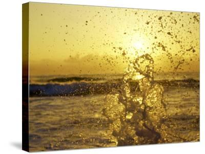 Water Splashing with Sun in the Background-Rob Lang-Stretched Canvas Print