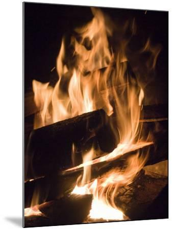 Fire and Wood-Daniel Root-Mounted Photographic Print