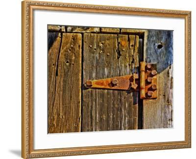 Close-Up of Rusted Door Hinge-Diane Miller-Framed Photographic Print