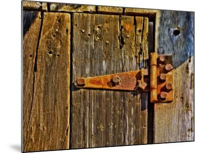 Close-Up of Rusted Door Hinge-Diane Miller-Mounted Photographic Print
