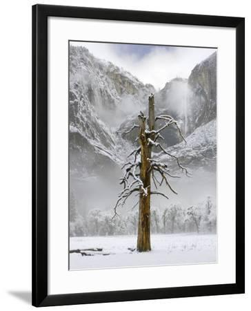 Yosemite Falls, Yosemite National Park, California-Diane Miller-Framed Photographic Print