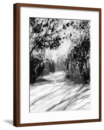 Trees and Shadows on Sand-Rich LaPenna-Framed Giclee Print