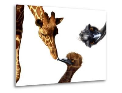 Giraffe, Emu and Offspring-Abdul Kadir Audah-Metal Print