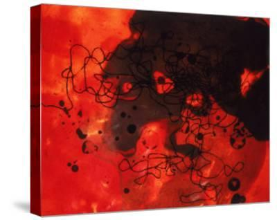 Abstract Image in Red and Black-Daniel Root-Stretched Canvas Print