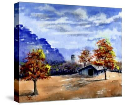 Secluded Barn in Meadow-Rich LaPenna-Stretched Canvas Print