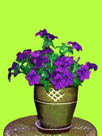 Petunia in Pot-Rich LaPenna-Stretched Canvas Print