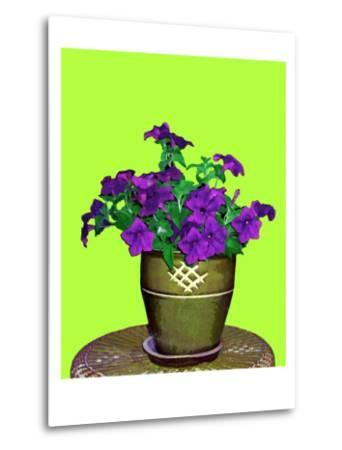 Petunia in Pot-Rich LaPenna-Metal Print