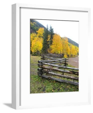 Wooden Fence in the Mountains of Colorado-David Edwards-Framed Photographic Print