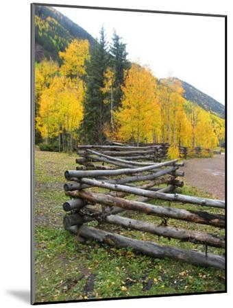 Wooden Fence in the Mountains of Colorado-David Edwards-Mounted Photographic Print
