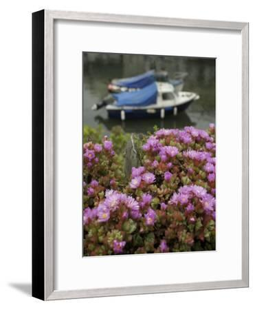 In Polperro, a Small Fishing Village, on the South Coast of Cornwall-Jim Richardson-Framed Photographic Print