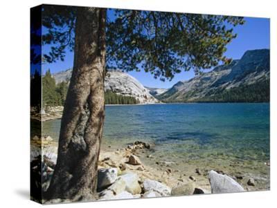 Shore of Tenaya Lake-Marc Moritsch-Stretched Canvas Print